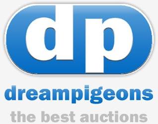 Dreampigeons