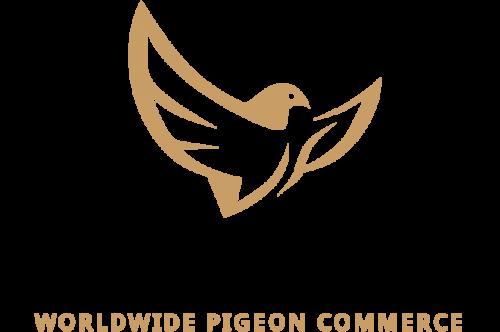 PigeonCom