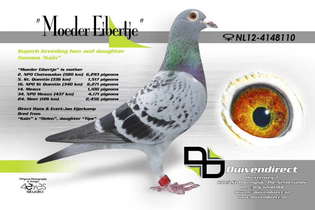 NL12-4148110