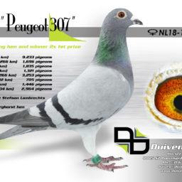NL18-1589307