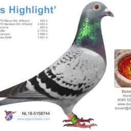 NL18-5158744